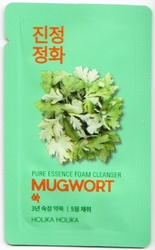 Holika Holika Pure Essence Mugwort Foam Cleanser - sample